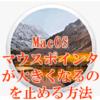 MacOS マウスポインタが大きくなるのを止める方法